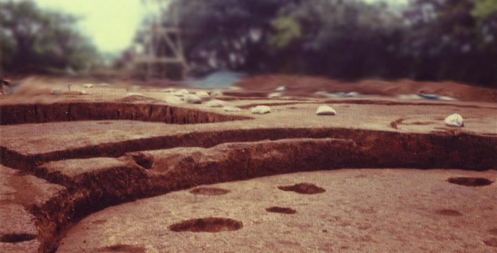 埋蔵文化財発掘調査業務
